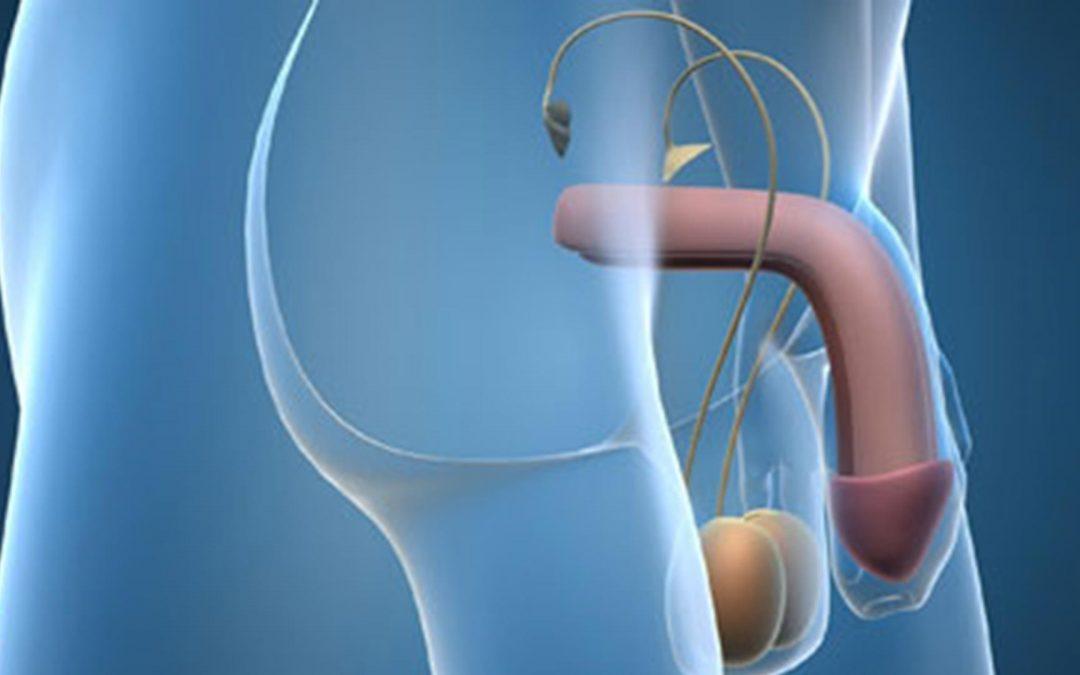 Comparación directa de tadalafil con sildenafil para el tratamiento de la disfunción eréctil: revisión sistemática y metaanálisis